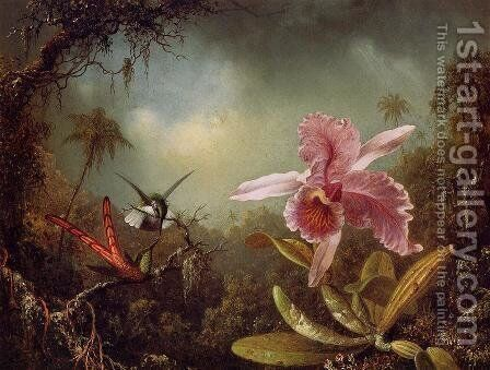 Orchid With Two Hummingbirds by Martin Johnson Heade - Reproduction Oil Painting