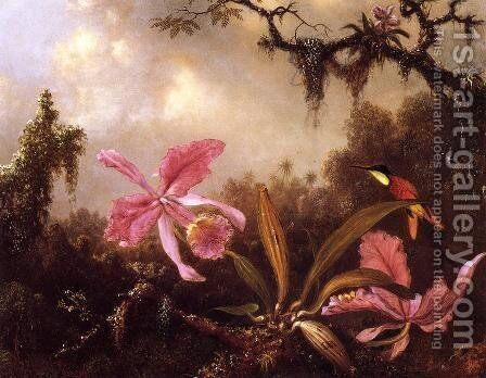 Orchids And Crimson Topaz Hummingbird by Martin Johnson Heade - Reproduction Oil Painting