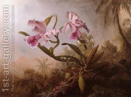 Orchids And Hummingbird2 by Martin Johnson Heade - Reproduction Oil Painting