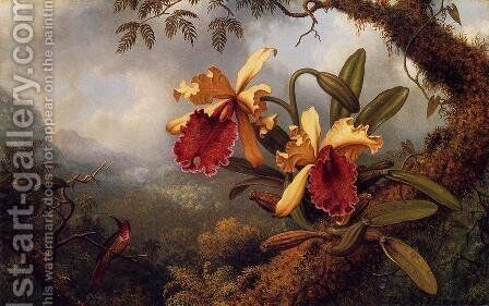 Orchids And Hummingbird3 by Martin Johnson Heade - Reproduction Oil Painting