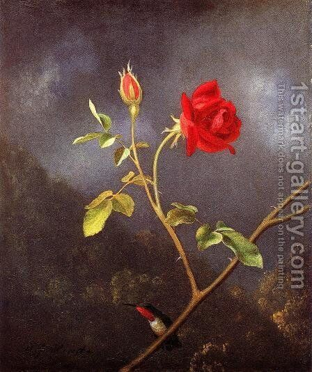 Red Rose With Ruby Throat by Martin Johnson Heade - Reproduction Oil Painting