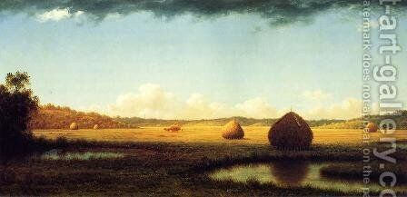 Summer Showers by Martin Johnson Heade - Reproduction Oil Painting