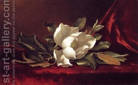 The Magnolia Blossom by Martin Johnson Heade - Reproduction Oil Painting