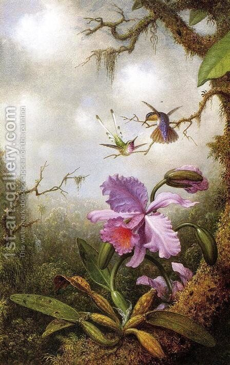 Two Hummingbirds And A PinkOrchid by Martin Johnson Heade - Reproduction Oil Painting