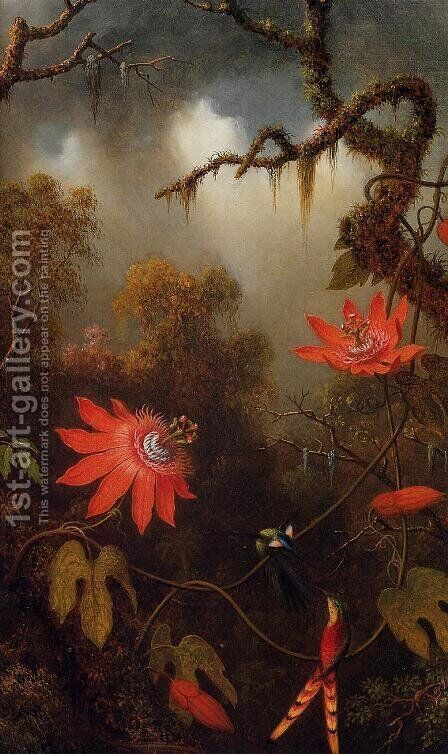 Two Hummingbirds Perched On Passion Flower Vines by Martin Johnson Heade - Reproduction Oil Painting