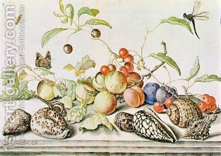 Still-life c. 1628 by Balthasar Van Der Ast - Reproduction Oil Painting