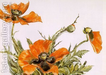 Poppies 1929 by Charles Demuth - Reproduction Oil Painting