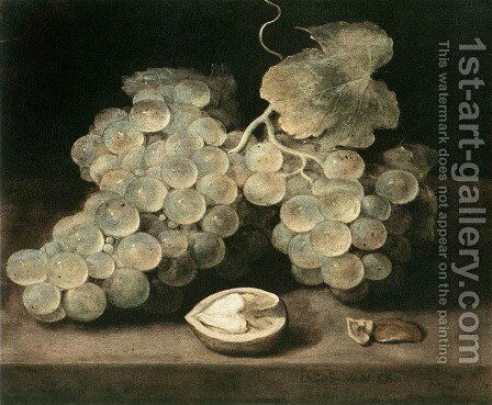 Grape with Walnut by Jacob Fopsen van Es - Reproduction Oil Painting