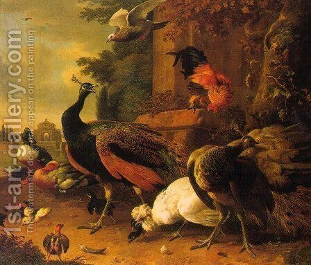 Birds in a Park  1686 by Melchior de Hondecoeter - Reproduction Oil Painting