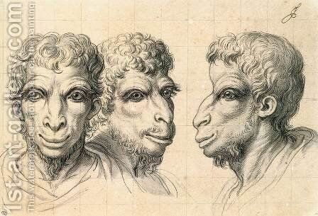 Physiognomic Heads Inspired by a Camel c. 1670 by Charles Le Brun - Reproduction Oil Painting