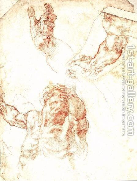 Study for Haman 1511 by Michelangelo - Reproduction Oil Painting