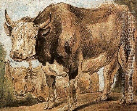 Two Standing Oxes, Facing Left by Jacob Jordaens - Reproduction Oil Painting