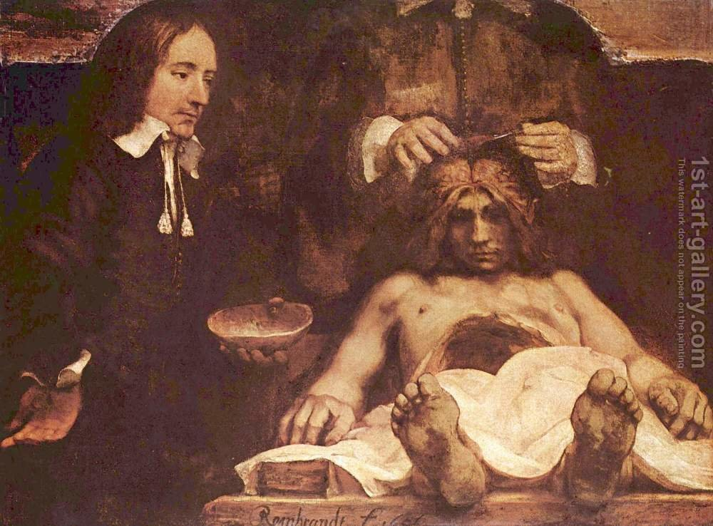 The anatomy lesson of Dr. Joan Deyman (or Dr. Jan Deijman) Rembrandt ...